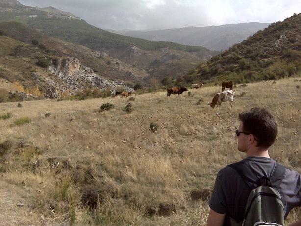Manolo contemplando los Llanos del Purche